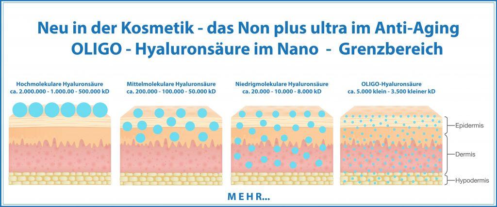 OLIGO-Hyaluronsäure